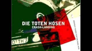 Die Toten Hosen - The Fly