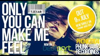 TZESAR - Only You Can Make Me Feel (Original Mix) // new french funky disco house