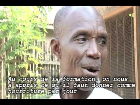 Elevages sans frontières : nos projets solidaires au TOGO
