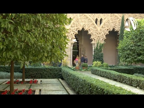 La Aljafería abre sus puertas para celebrar los 38 años de la Constitución