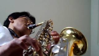 Motherland - Crystal Kay (Alto Saxophone)