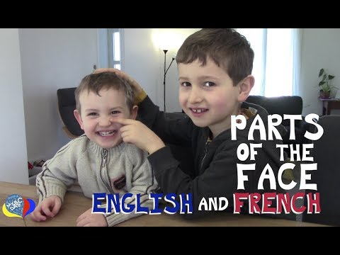 How To Say Parts Of The Face In English And French