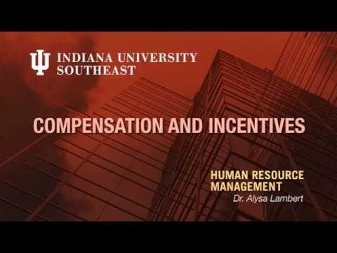 HR Management: Compensation & Incentives