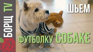 Одежда для собак из старых вещей | Как сшить одежду для собак своими руками
