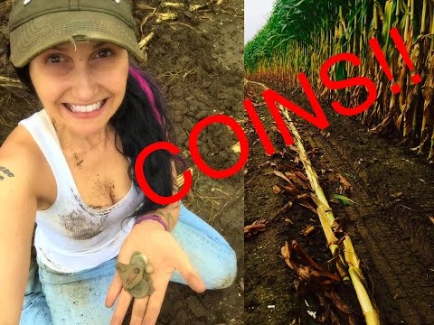 Metal detecting: Why I LOVE a freshly cut cornfield!!!  Coin harvest!!!  MXT Pro, Treasure Pro