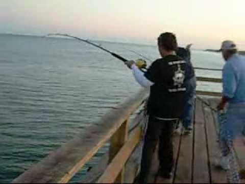 king fishing from kure beach pier 1 of several caught