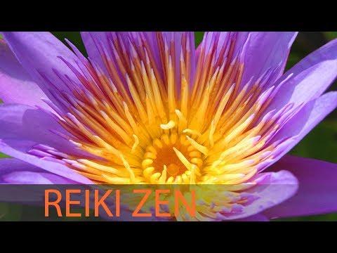 3 Hour Reiki Meditation Music: Healing Music, Calming Music, Reiki Healing, Relaxation Music ☯1709