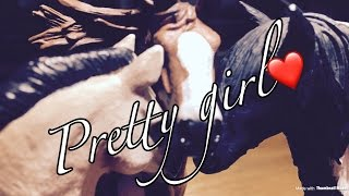 Schleich Music Video Pretty Girl