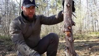 Нож КОРШУН-2 ООО ПП Кизляр. Уличный тест