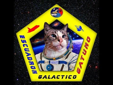 Escuadron Galactico Gatuno