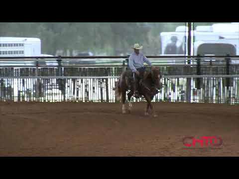 NRCHA Sale Horse 2018, Hip No: 1021 with Boyd Rice