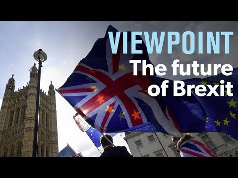 The future of Brexit — interview with Daniel Hannan | VIEWPOINT