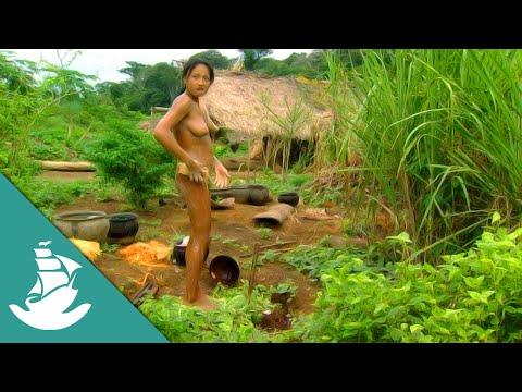 La selva y el asfalto - ¡Ahora en Alta Calidad! (Documental Completo)