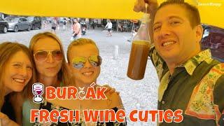 🍷Burčák Fresh Wine Cuties | Cabbage Market, Lužánky Park, My Airbnb | BRNO Czech Republic