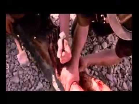 Naa Jeevam, Naa Sarvam   KRIPAL MOHAN   Telugu Christian Song