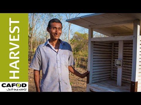 Harvest: Meet El Salvador's newest weather man… | CAFOD