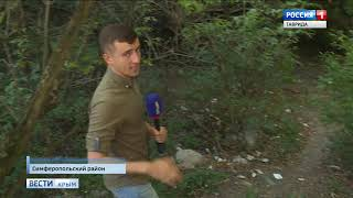 Голыми руками: В Крыму бывший десантник задушил волка