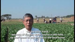 WV Myanmar Landless vegetable growers