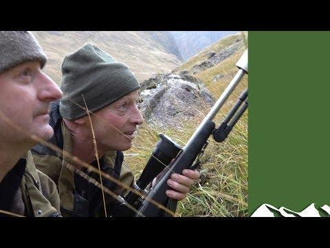 Stalking Stags In Argyllshire