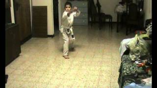 new karate kid talent