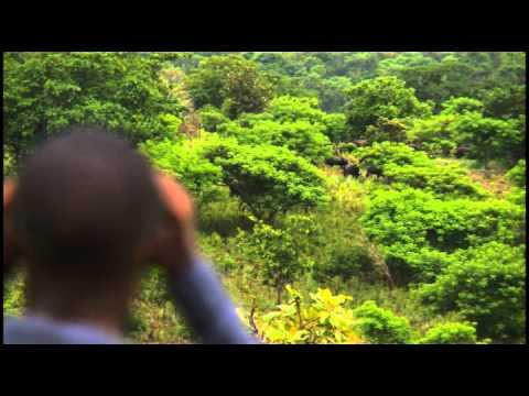 Burundi tourism