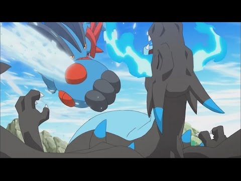 Mega evolution pok dex short mega swampert youtube - Mega jungko ex ...