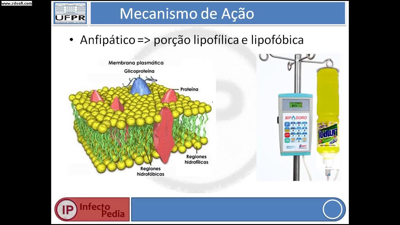 prostatite cronica antimicrobica