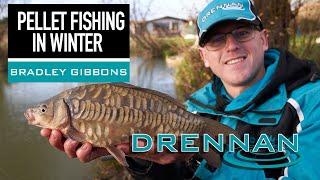 Pellet fishing in Winter | Bradley Gibbons | Match Fishing