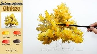 Basic landscape watercolor -Ginkgo. wet-in-wet. ARCHES (Rough) NAMIL ART