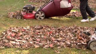 The lawnmower part that wins all the leaf bagging: The Big Leaf Bag