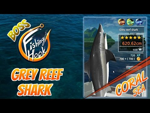 Fishing Hook Game For Android - Boss Fish At Coral Sea : Grey Reef Shark