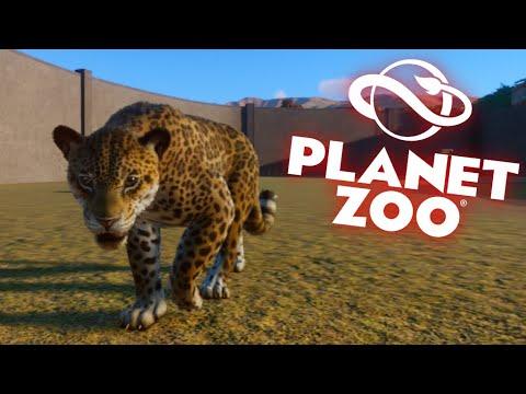 2 JAGUARS VS 2 CHEETAHS VS 2 SNOW LEOPARDS| Planet Zoo |