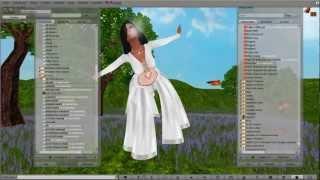 ¿Cómo hacer un AO en Second Life?