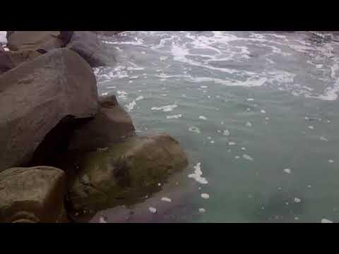 La pocita de playa punta negra