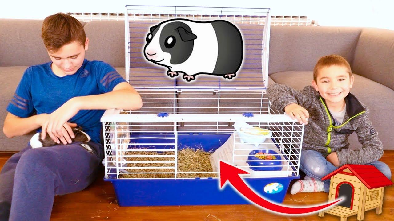 la nouvelle maison de notre cochon d 39 inde oreo youtube. Black Bedroom Furniture Sets. Home Design Ideas