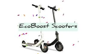 Electric scooters. Tesup EcoBoost Scooters