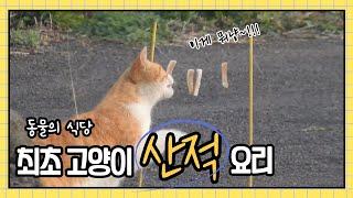 고양이 요리 / 흑돼지오겹살 껍대기 산적