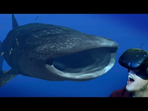 The Whale Shark! - Operation Apex | HTC VIVE | Ep2