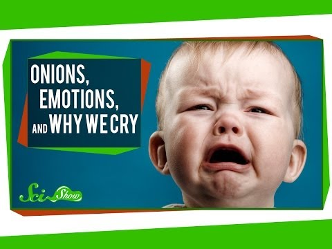 Onions, Emotions, and Why We Cry
