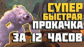 Прокачка 110-120 за 12 часов в Битве за Азерот ! Battle for Azeroth