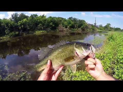 Bass Fishing Grand Prairie, Texas