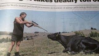 Milk & Water Shortage 2013: NZ Food Supplies Collapse