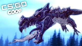 LE DRAGON NOUS ATTAQUE ! (CS:GO Coop Fun)