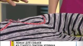 Лежак для собаки из старого свитера хозяина