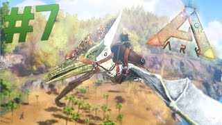 taming flying dinosaurs ark survival evolved ep 7 ark gameplay