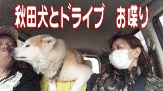 秋田犬そうすけ君今日も元気です。 この日は朝からテーブルで顎のせ犬し...