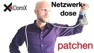 Netzwerkdose verkabeln anschließen patchen   4K   iDomiX
