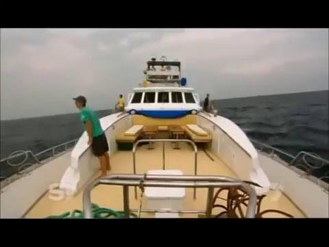 Sri Lanka A Must See Documentary - www.kashyapatours.com
