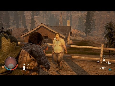 CAZADORES DE ZOMBIES - STATE OF DECAY 2