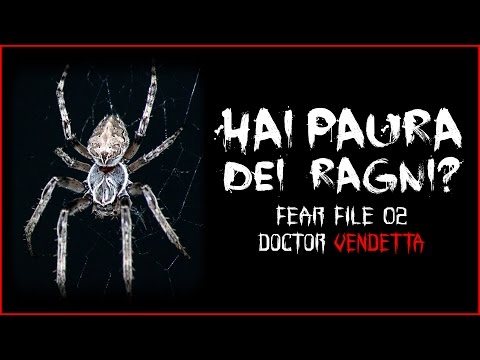 HAI PAURA DEI RAGNI ? 💊 FEAR #02